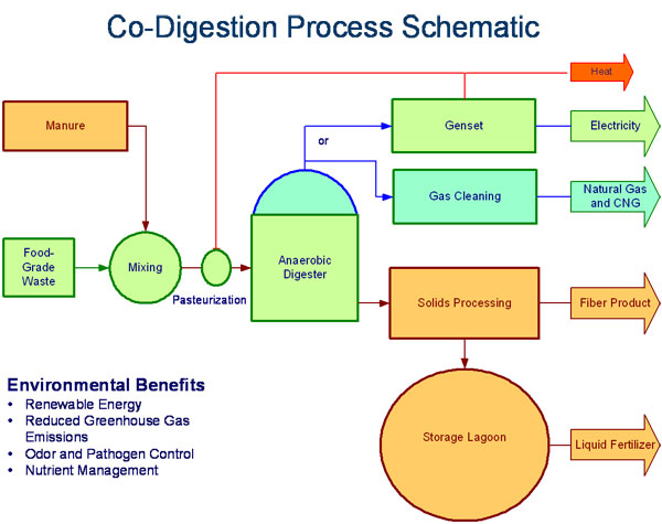 Technology Ch4 Biogas Renewable Energy Anaerobic